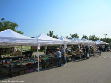 EGV Farmers Market - lk Grove Village Farmers Market - http://chicagolandgarden.com/