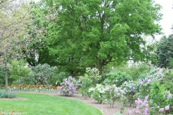 Lilacia Park 3 - http://chicagolandgarden.com/